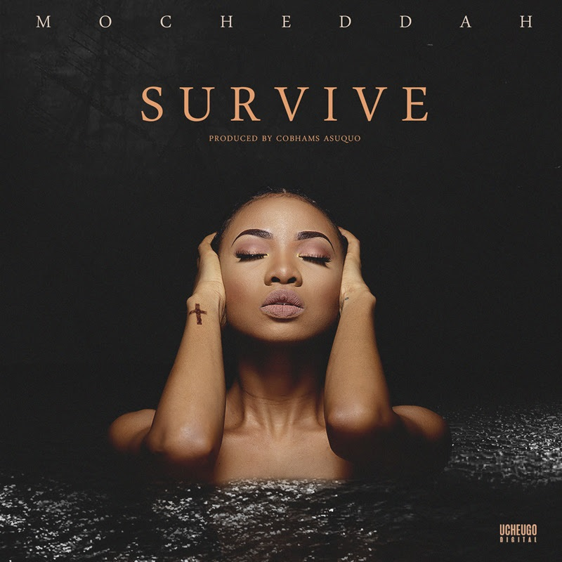 Mo'Cheddah survive