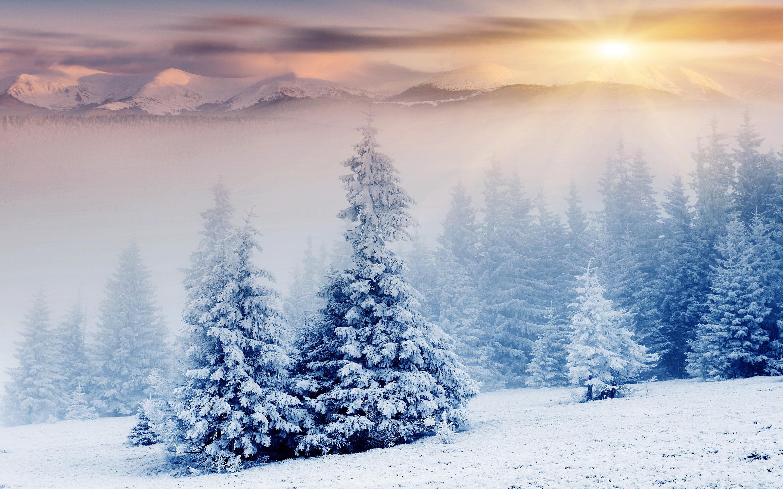 snow-08