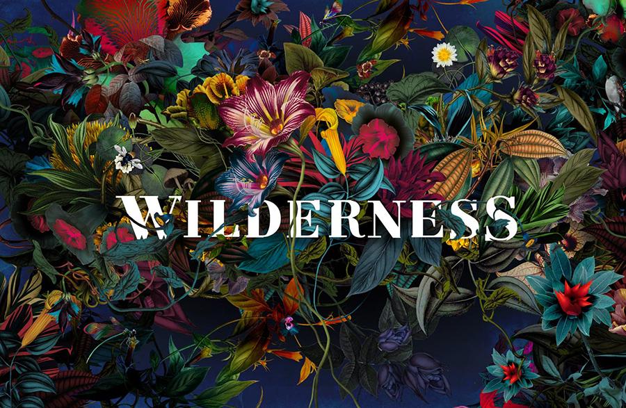wilderness-festival